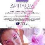 Семинар по процедурам для жирной кожи Denova pro
