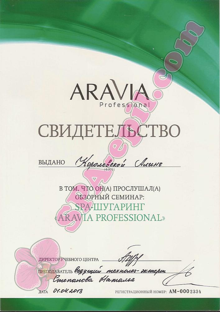 Обзорный семинар Aravia