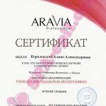 Обучение с правом преподавания Aravia II уровень