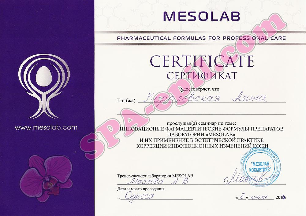 Базовый семинар Mesolab