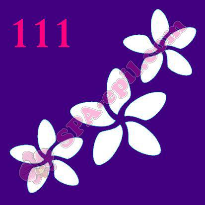 """Трафарет для биотату № 111 (""""Цветы"""")"""