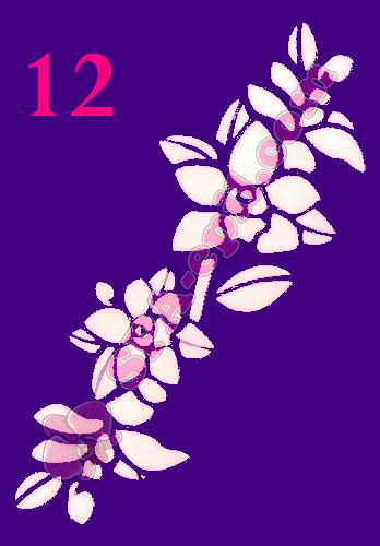 "Трафарет для биотату № 12 (""Орхидеи 12"")"
