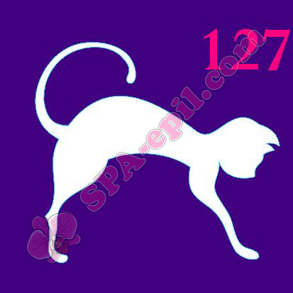 "Трафарет для биотату № 127 (""Кошка"")"
