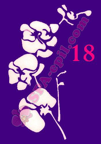 "Трафарет для биотату № 18 (""Орхидеи 18"")"