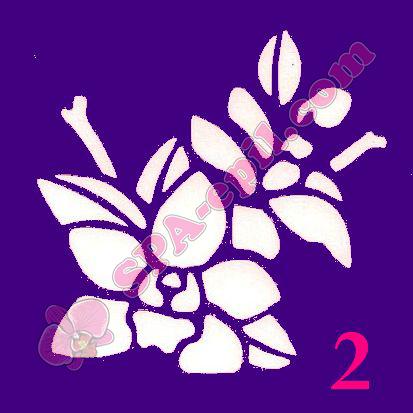 "Трафарет для биотату № 2 (""Орхидеи 2""), 8*8смТрафарет для биотату № 2 (""Орхидеи 2"")"