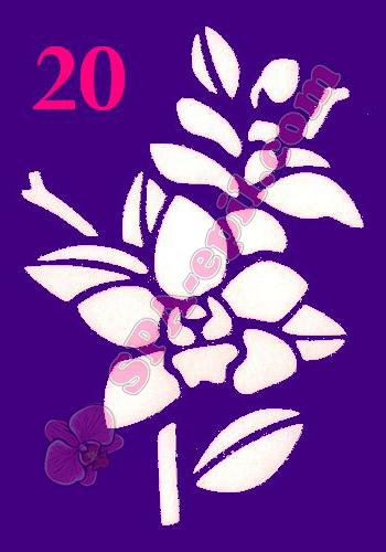 "Трафарет для биотату № 20 (""Орхидеи 20"")"