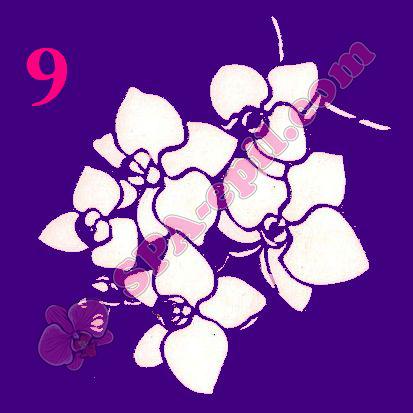 "Трафарет для биотату № 9 (""Орхидеи 9"")"